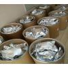 3,3',4,4'-联苯四羧酸二酐BPDA湖北厂家供应